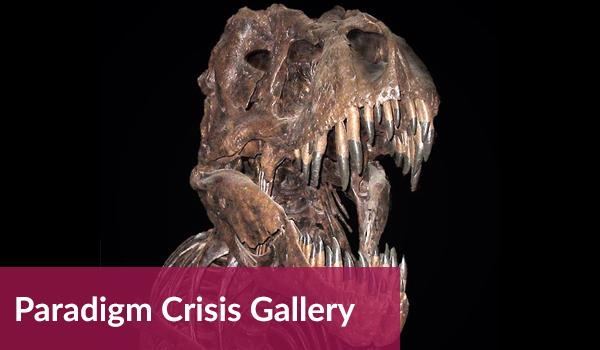 Paradigm Crisis Gallery