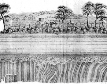 A drawing of the Jedburgh unconformity