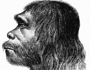 Neanderthal – 1888 reconstruction